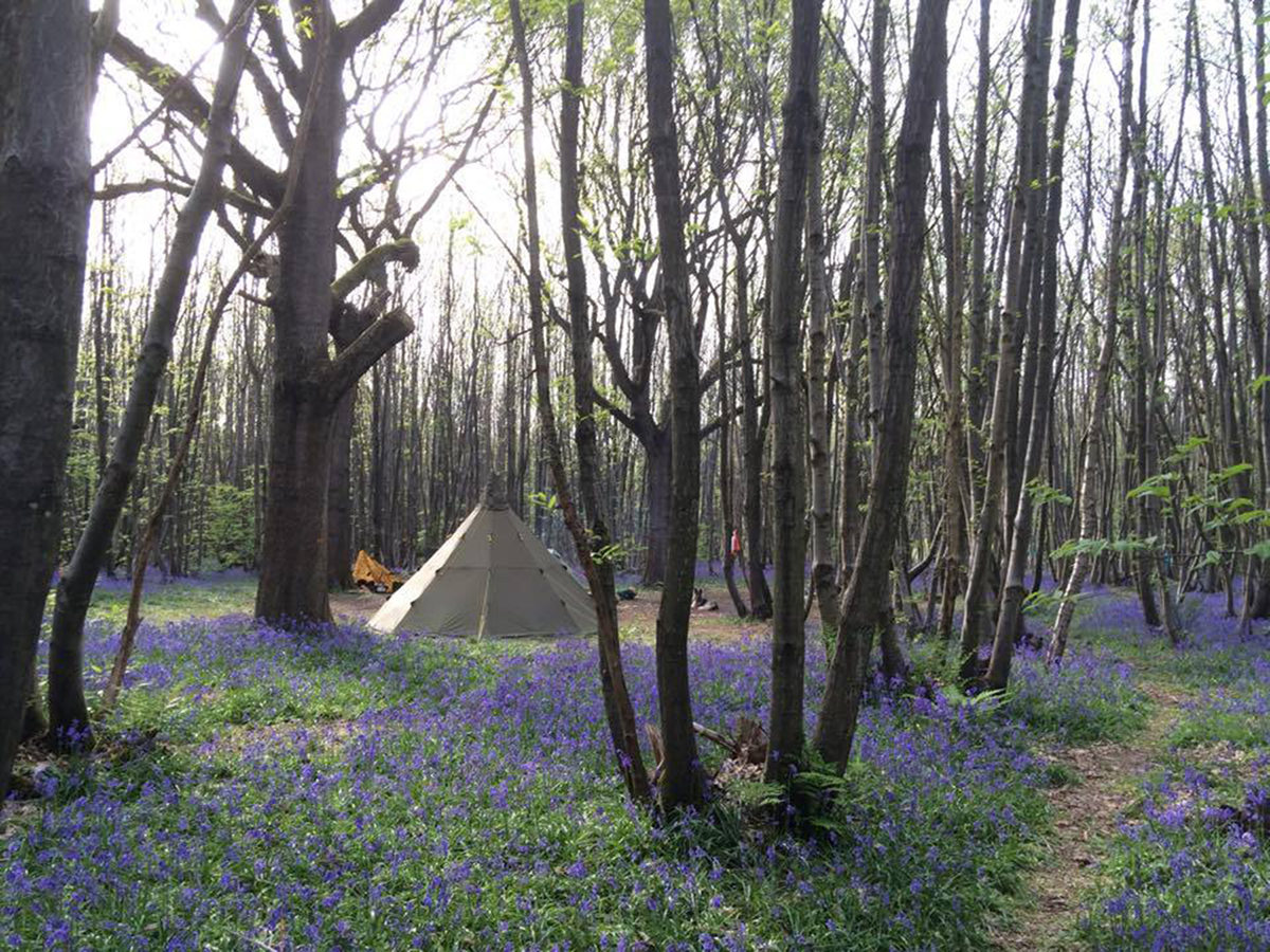 Birling-Estate-Badgells-wood-camping-carousel-4-1200pixels