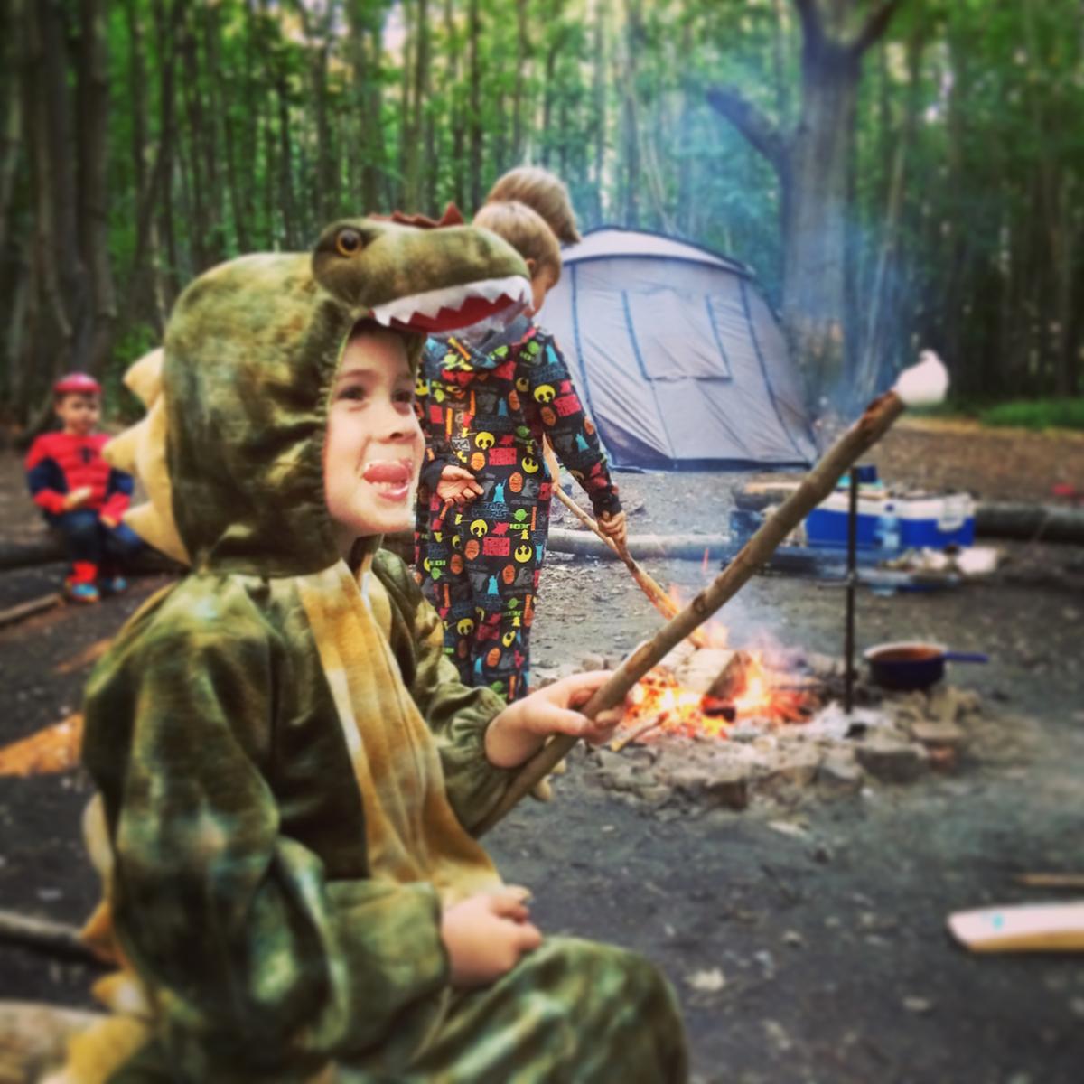 Birling-Estate-Badgells-wood-camping-divider-2-1200pixels