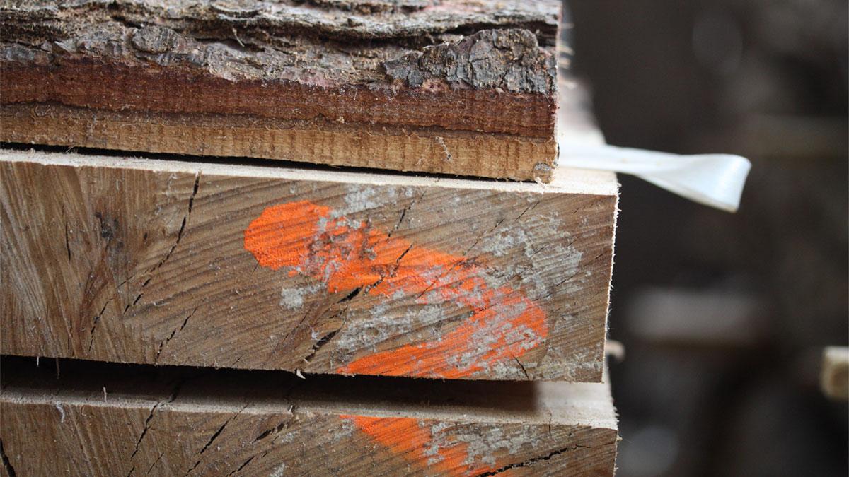 Birling-Estate-english-timber-milled-1