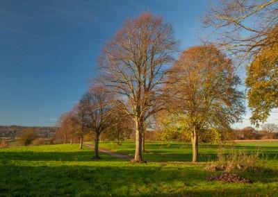 Birling-estate-gallery-1-lo-res